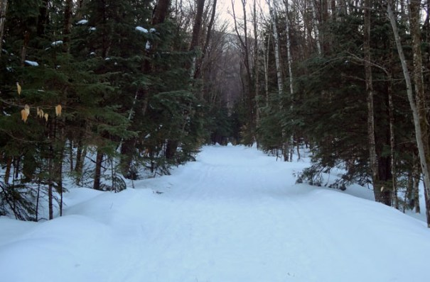 Lincoln Woods Trail in Winter