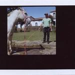 """horse dresser <a style=""""margin-left:10px; font-size:0.8em;"""" href=""""http://www.flickr.com/photos/22883207@N00/14921934786/"""" target=""""_blank"""">@flickr</a>"""