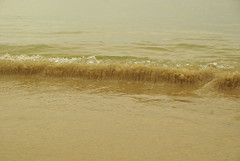 Petite vague