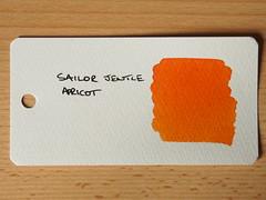 Sailor Jentle Apricot - Word Card