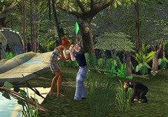 The Sims 2 Castaway