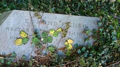 Edmund Fisher