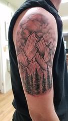 Trees-mountains