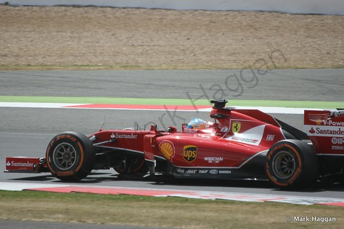 Fernando Alonso in his Ferrari during Free Practice 2 at the 2014 British Grand Prix