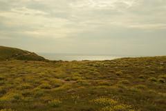 Île de Houat