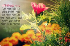 """Matthew 5:16 • <a style=""""font-size:0.8em;"""" href=""""http://www.flickr.com/photos/95703371@N00/14901662735/"""" target=""""_blank"""">View on Flickr</a>"""