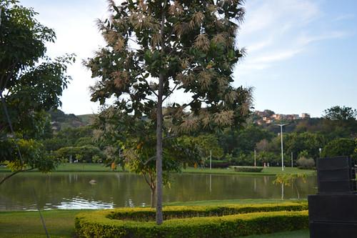 Paisagem fantástica do Parque Ipanema