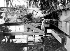 Bridge, 1902