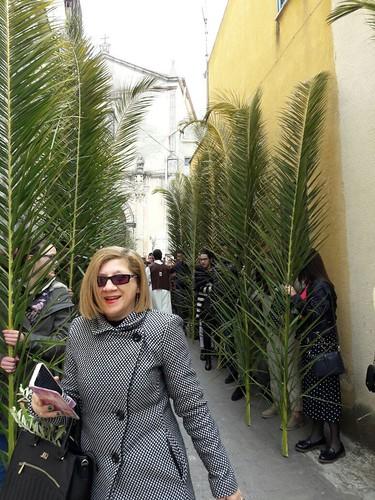 Domenica palme 2017 (25)