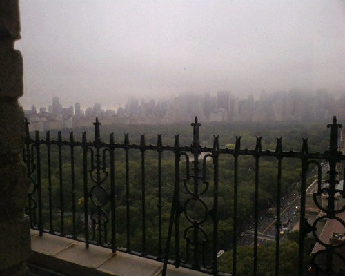 Foggy Day overlooking the park.