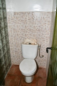 The European-style toilet   Flickr - Photo Sharing!