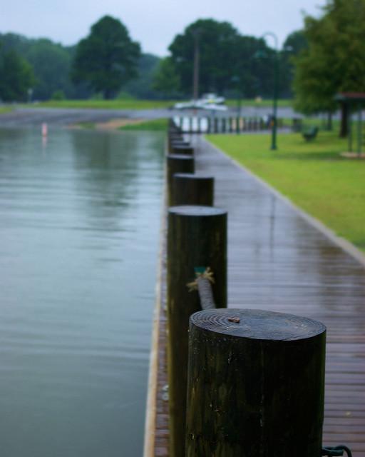 Tournament Dock, Lake Dardanelle State Park, Arkansas, August 10, 2008
