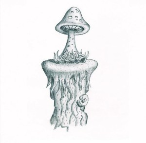 mushroom mushrooms drawing pencil drawings trippy cool flickr draw tattoo sketches fairy bird easy disney sketch sharing doodle inspiration creative