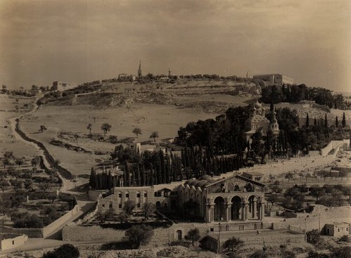 The Garden of Gethsemane in 1937.