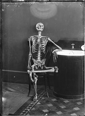 skeleton sat on a chair