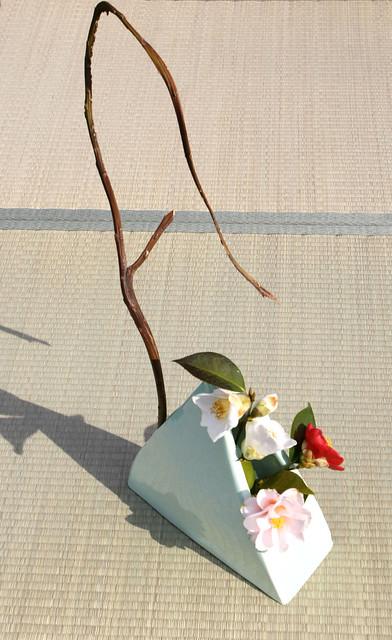 Ikebana Sogetsu (realizzato da Luca Ramacciotti) per Le camelie della Lucchesia