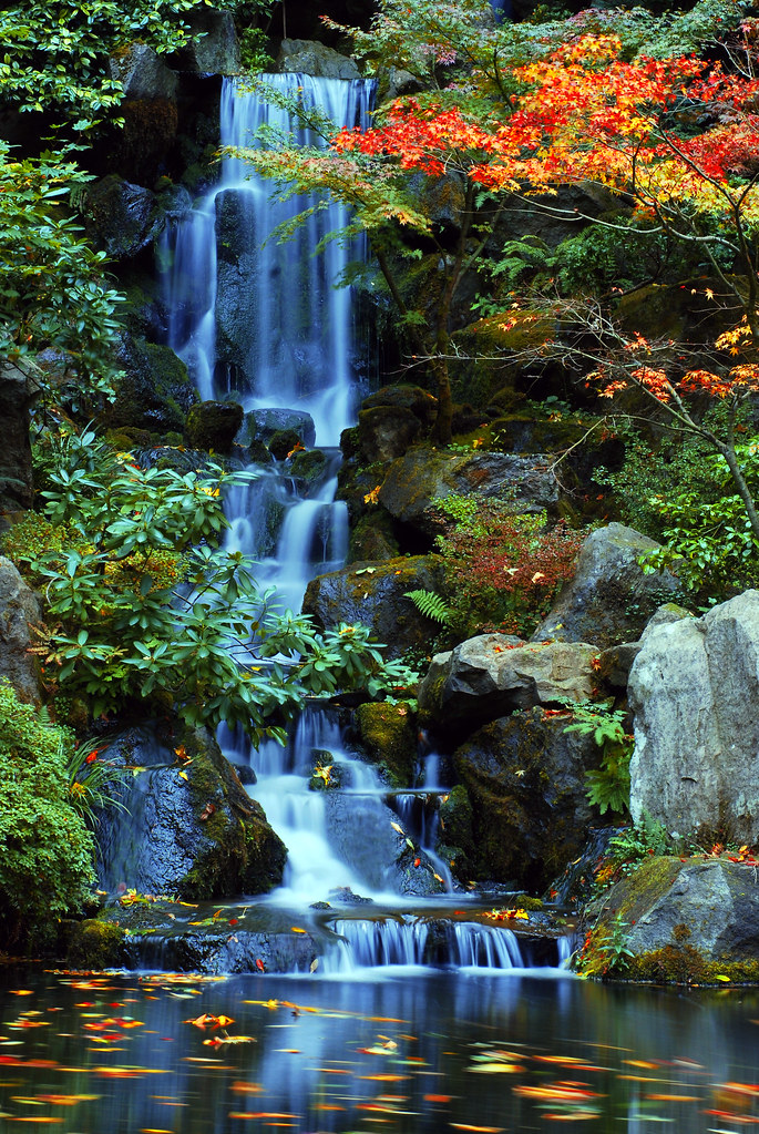 Portland Or Fall Had Wallpaper Heavenly Falls In The Fall At The Japanese Gardens Flickr
