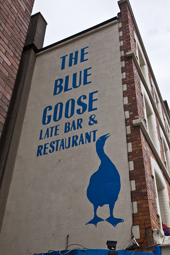 THE BLUE GOOSE by infomatique