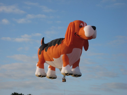 Dog Hot Air Balloon