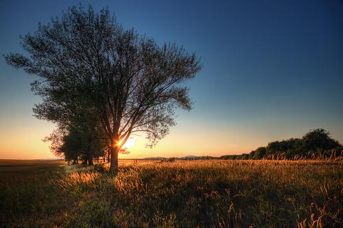 Veszprém Sunset
