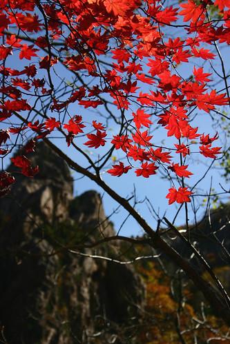 Sorak Mountain in korea