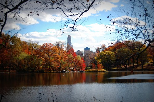 New York City in the fall