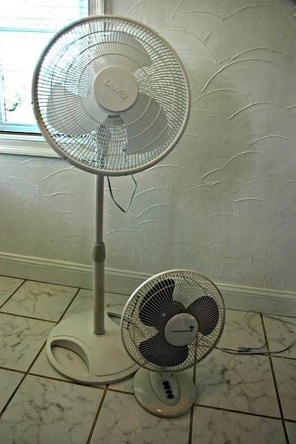 Lasko Floor Fan And Palm Air Table Fan Standard Electric
