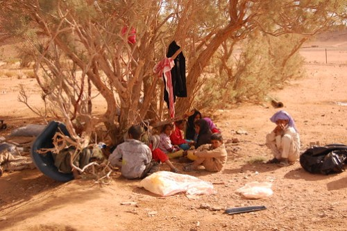 Bedouin Children At Play DSC_0731