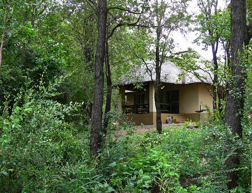 Sirheni Bush Camp, Bungalow no 13