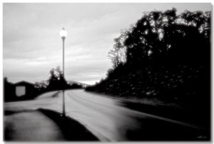 """Meeting Sunrise"" di Nellie Vin"