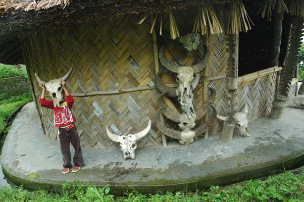 What do I look like? Naga Village, Kisama, Nagaland, India