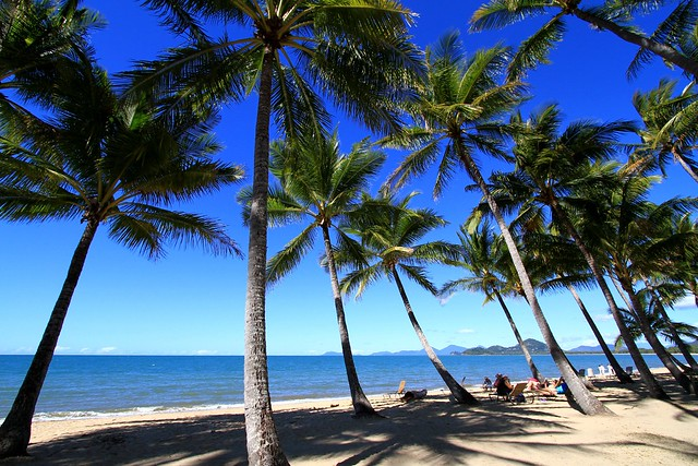 Beach at Palm Cove in Cairns, Australia
