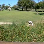 Golfbaan Skukuza