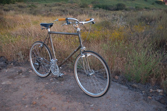 Rivendell Bicycle Works Custom Protovelo