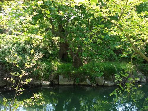 Alexandroupoli loutra river