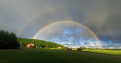 You are not seeing the double rainbows. How sad.