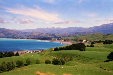 Nature and Whale Watching in Kaikoura - New Zealand, Waitangi Day, Frozen Yogurt Day