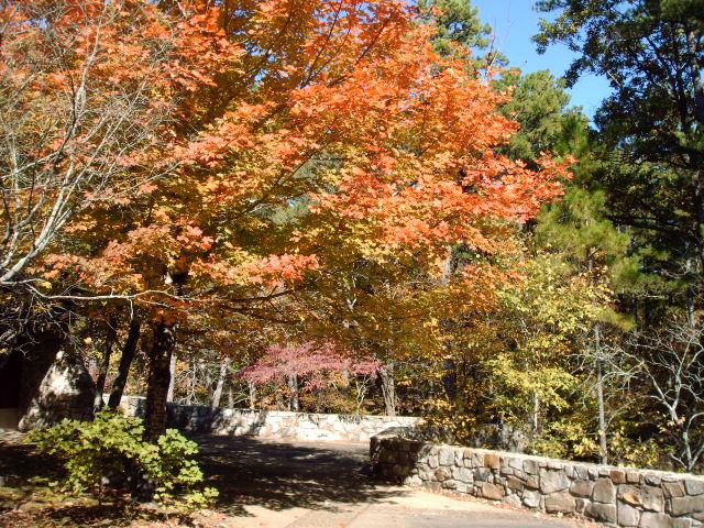 Kerr Arboretum