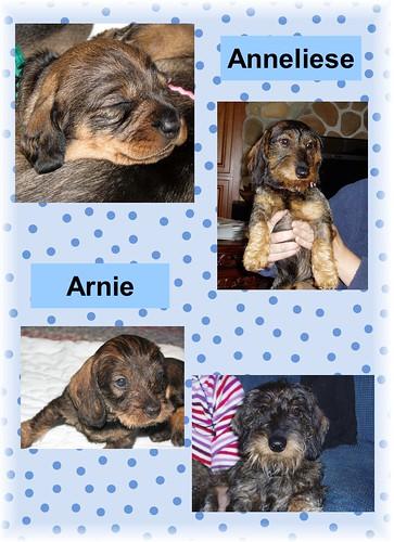 arnie and anneliese