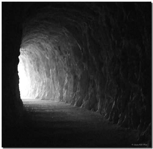 The light / La luz