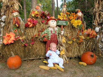 Harvest Patch Baby photo