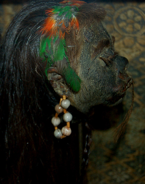 Female Shrunken Head | Flickr - Photo Sharing!