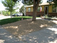 Front Yard With Mulch | Flickr - Photo Sharing!