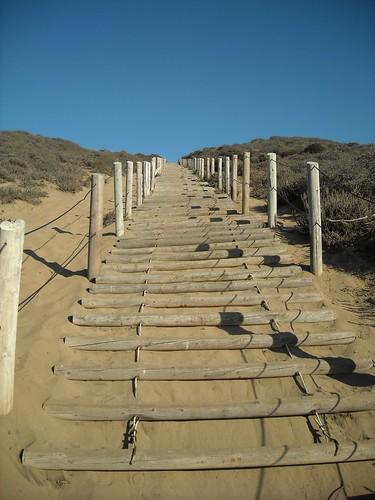 Baker Beach Sand Ladder