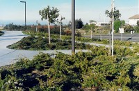 David Reed Landscape Architects  Blog Archive ...