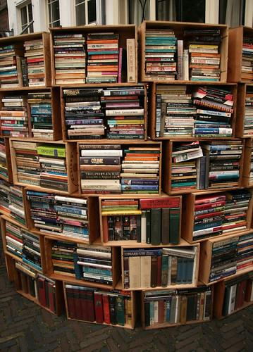 Modelos de estantes rsticas para os seus livros