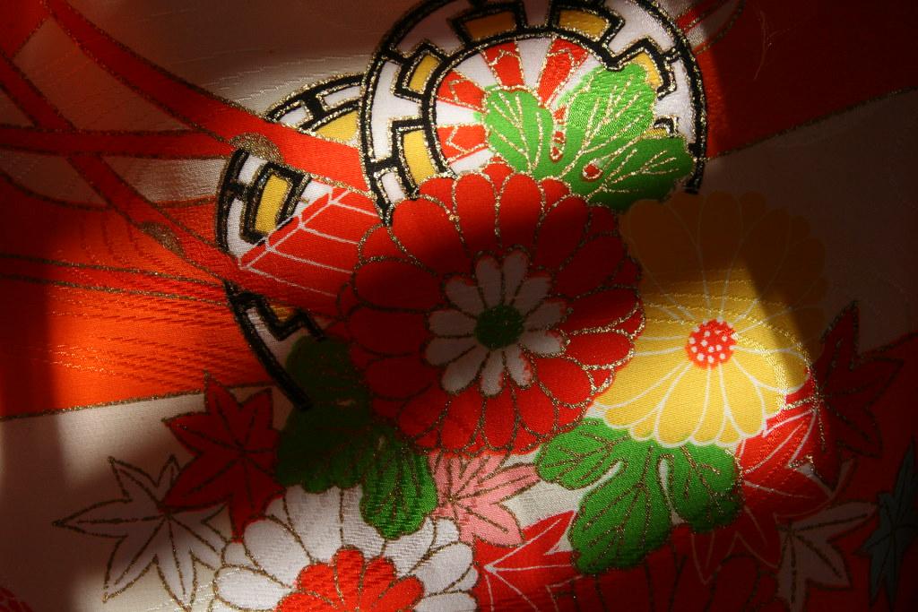 30/365 - kimono study vi