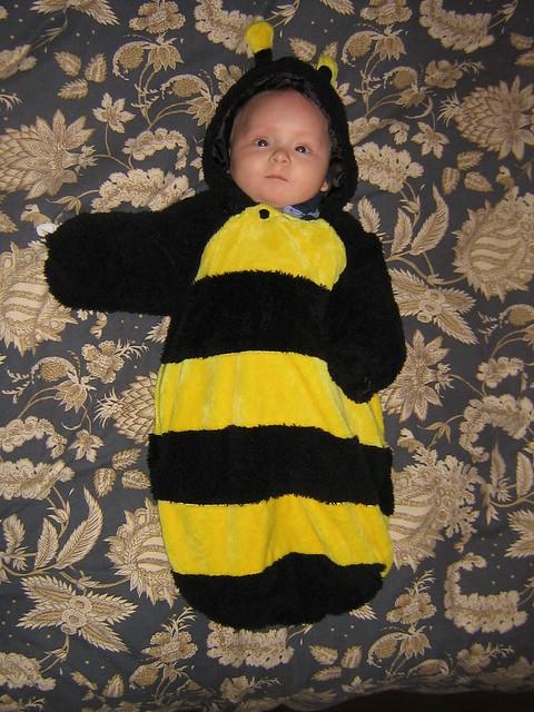 Relaxin' Bee