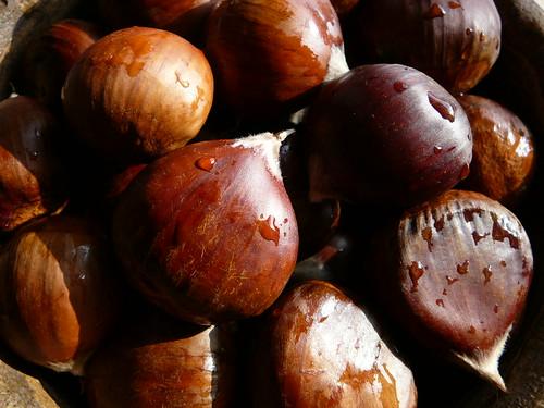 Beautiful Chestnuts