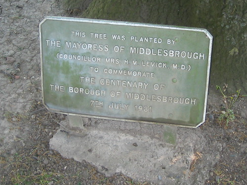 Mrs H.M. Levick Tree Plaque, Albert Park